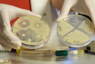 ידיים אוחזות חומרים במעבדה